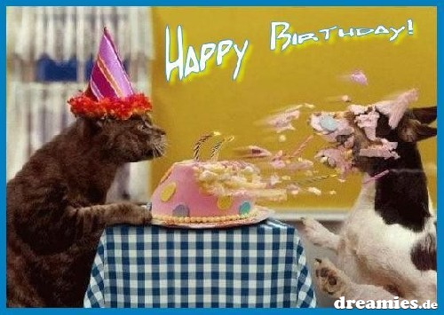 Image result for cat blows candles out on dog
